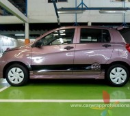 Suzuki celerio 99 Design viper stripes